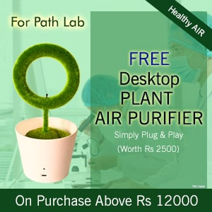 Free Desktop Plant Air Purifier on Order Above Rs 12000/- See the video how it works.